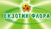 Екзотик-Флора, квітковий салон-магазин