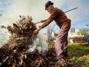 Чим шкідливе спалювання сухого листя й трави?