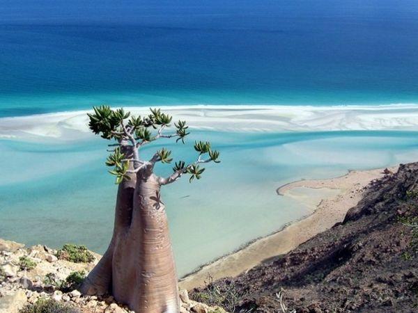 Острів Схерія