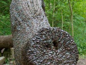 Монетные деревья в Англии (ФОТО)