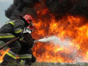 Кропивницький: Біля Інгульської шахти горить сухостій (ВІДЕО)