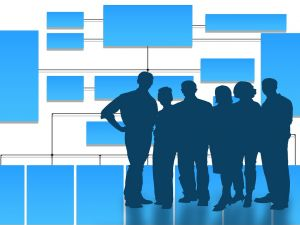 Новий сервіс для роботодавців - особистий консультант
