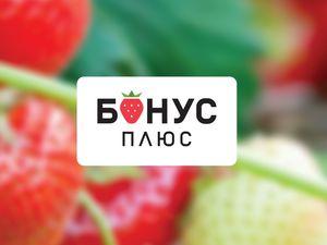 Більше мільйона гривень накопичили на бонусних рахунках жителі Кіровоградщини