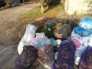Кропивницький: На Новоолексіївці не вивозиться сміття (ФОТО)