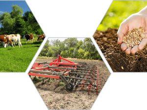 Агропідприємствам Кіровоградщини потрібні робітники