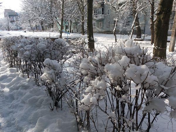 Чого очікувати протягом дня у Кропивницькому
