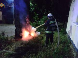 Кіровоградська область: Вогнеборці ліквідували п'ять займань на відкритій території