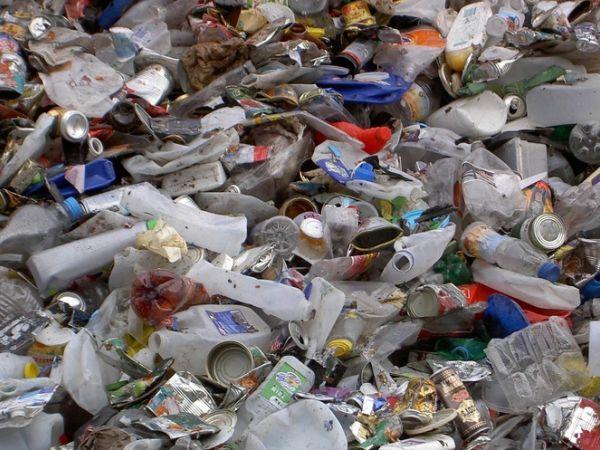 Мешканка Кропивницького своїм сміттям робить нестерпним життя сусідів (ВІДЕО)