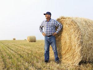 Безробітні Кіровоградщини можуть безкоштовно вивчитись на фермера