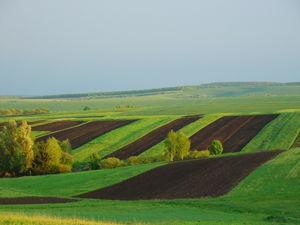 650 ОТГ отримали від Уряду півтора мільйони гектарів земель