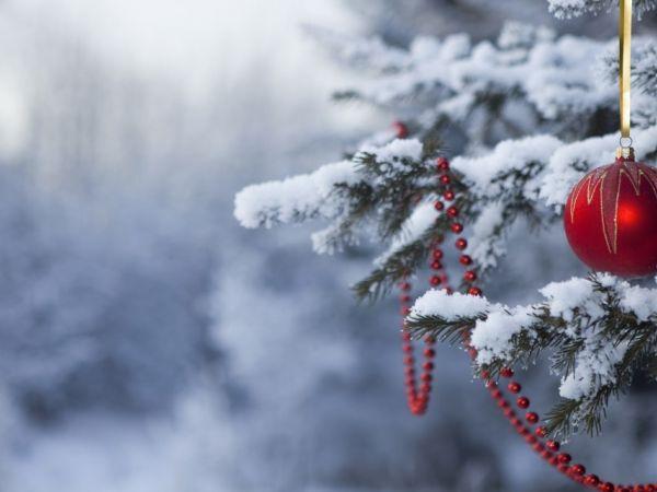 Погода у Кропивницькому 19 січня