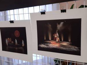 Кропивницький: у художньому музеї відкрили нову експозицію (ФОТО)