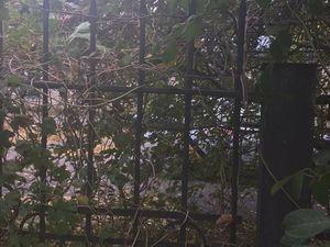 У Кропивницькому троє молодиків розбирали металевий паркан біля нежилого будинку