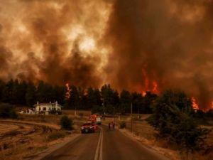 Рекомендації громадянам України у зв'язку з масштабними лісовими пожежами в Греції та Північній Македонії