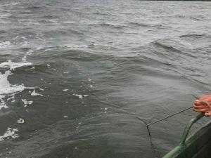 Кіровоградська область: У Дніпрі потонув 47-річний чоловік
