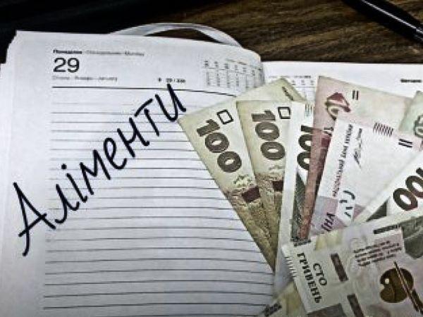 З початку року на Кіровоградщині працевлаштували 112 боржників з виплати аліментів