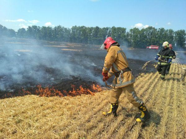 На Кіровоградщині сталося вісім пожеж стерні та сміття (ФОТО)