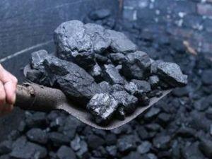 Тендерний комітет закупив вугілля для шкіл по завищеній ціні