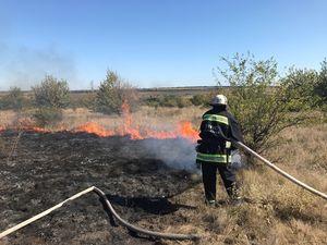 У Кіровоградській області вогнеборці приборкали чотири пожежі у природі
