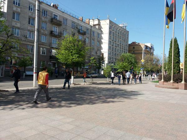 Міський голова Кропивницького просить викосити бур'яни у себе під носом