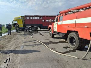 Кіровоградська область: Під час аварії загинув водій MERCEDES
