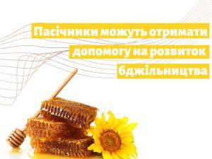 Пасічники з Кіровоградщини можуть отримати по 200 грн за бджолосім'ю