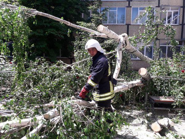 Рятувальники Кіровоградської області прибрали три аварійні дерева