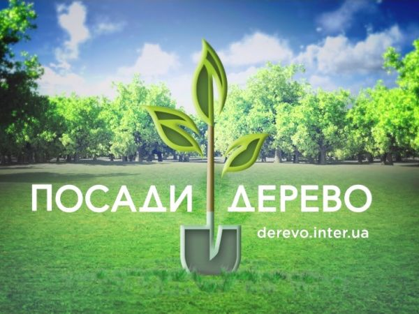 «Интер» начинает акцию «Посади дерево»