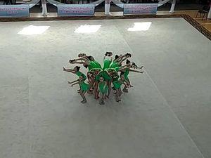 У Кропивницькому відкрилася літня Універсіада України з художньої гімнастики (ФОТО, ВІДЕО)
