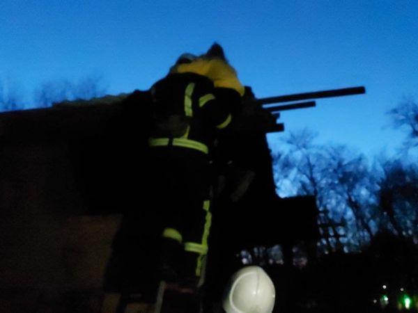 У Ковалівському парку дівчинка застрягла на даху недобудови (ФОТО)