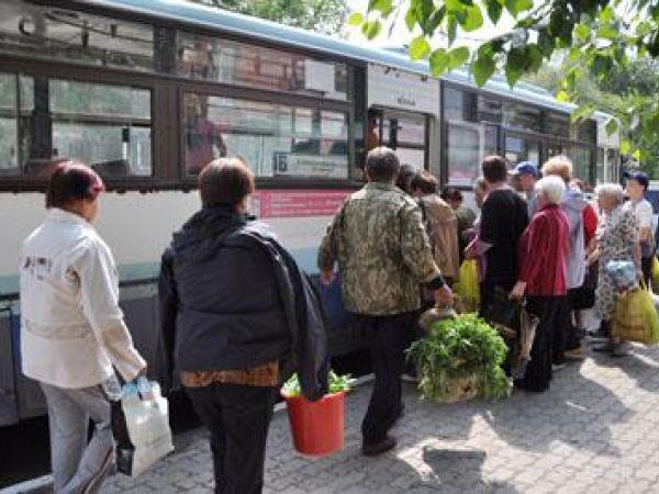 Кропивницький: Якими автобусами можна доїхати до садово-огородніх товариств (ГРАФІК)