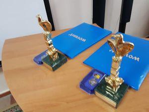 """Кропивницький: Чому передумали нагороджувати премією Маланюка в номінації """"Літературознавство та публіцистика"""" (ВІДЕО)"""