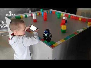 В Кропивницькому відкриється виставка роботів