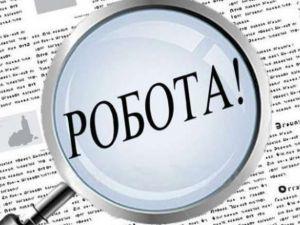 Кількість вакансій на ринку праці Кіровоградщини сягнула трьох тисяч