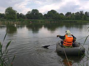 Кіровоградщина: У річці Синиця лебеді потрапили до рибацької сітки