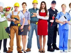 У яких професійних сферах на Кіровоградщині найбільша конкуренція?