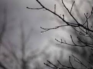 Погода у Кропивницькому 4 січня