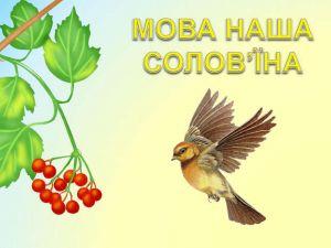 """У Кропивницькому триває конкурс творчих робіт """"Соловей співає. Доки голос має"""""""
