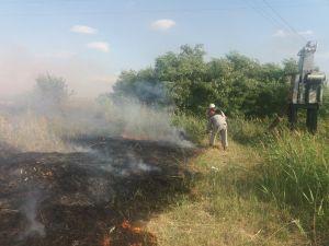 В Кіровоградській області палав сухостій