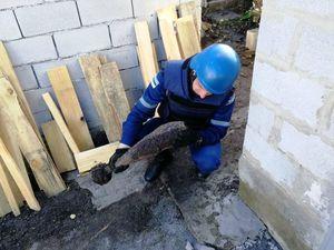 Кропивницький: На Масляніківці у приватному секторі на городі знайшли дві мінометні міни