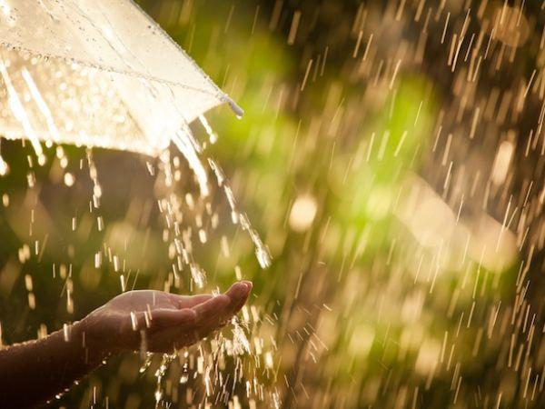 Перший тиждень серпня в Кропивницькому: від дощу до спеки