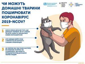 Чи можуть домашні тварини поширювати коронавірус?