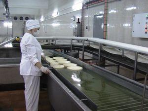 Кіровоградщина: на Світловодський маслосирзавод працевлаштувалися більше ста безробітних