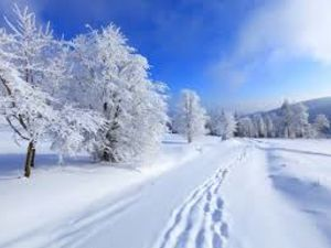 Погода у Кропивницькому 16 січня