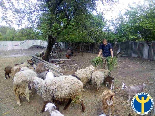 На Кіровоградщині атовець відкрив бізнес у рідному селі