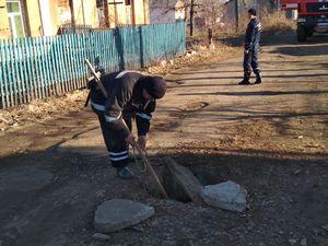 Рятувальники Кіровоградщини витягли собаку та двох котів із глибоких ям