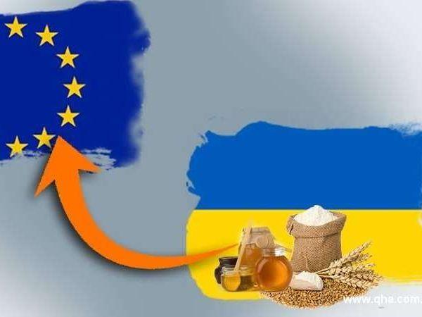 Кіровоградська область: Зовнішня торгівля товарами з країнами ЄС