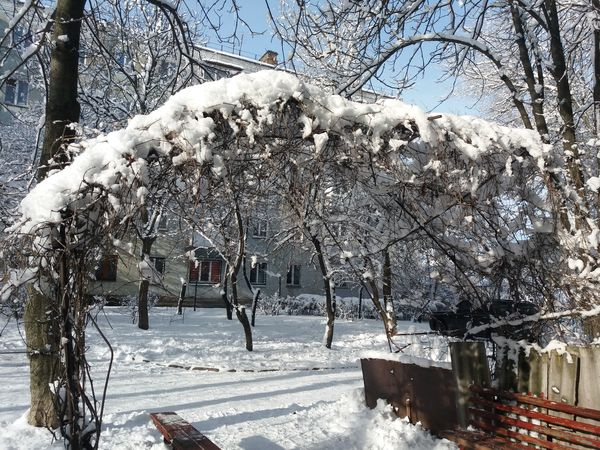 Погода у Кропивницькому  сьогодні