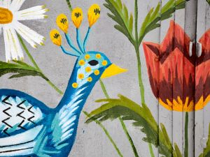 """Кропивницький: """"Баба Єлька"""" готує до друку серію листівок із птахами з рушників (ФОТО)"""