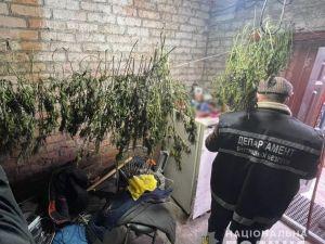 Правоохоронці затримали  групу наркозбувачів (ФОТО)